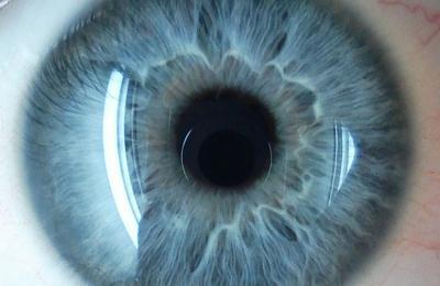 Капли для восстановления зрения при дальнозоркости