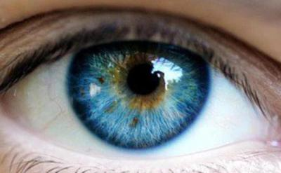 Бринзоламид глазные капли аналоги
