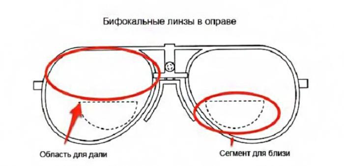 Как устроены бифокальные линзы для очков