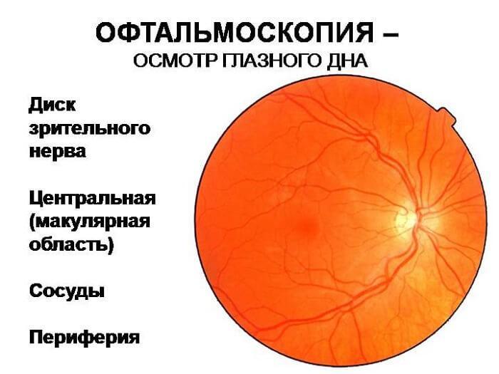Офтальмоскопия (осмотр глазного дна).