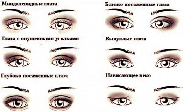 Разновидности глаз; миндалевидные глаза