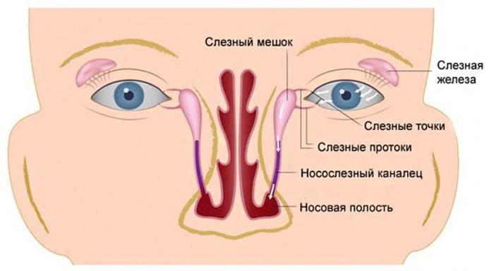 Воспаление слёзного мешка